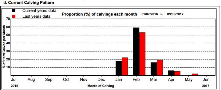 Calving-Pattern